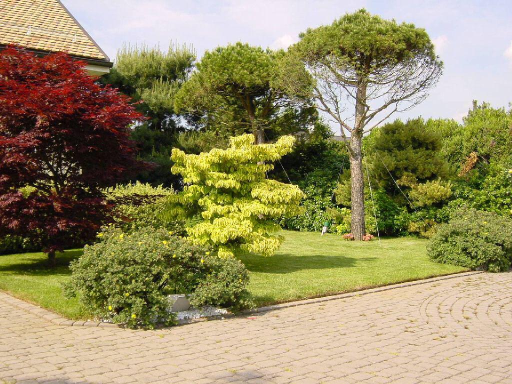 Jardin for Emploi entretien jardin